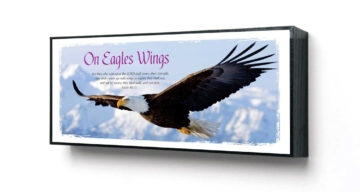 FRAMED PICTURE - EAGLES WINGS