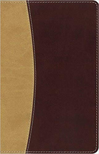Amplified Holy Bible, Compact, Leathersoft, Tan-Burgundy Captures the Full Meaning Behind the Original Greek and Hebrew Imitation Leather – October 6, 2015