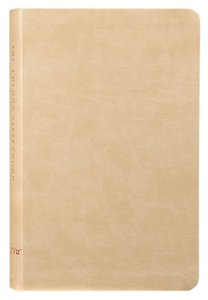 Colour SIsterhood NIV Bible THE WORD The Greatest Story Ever Told Imitation Leather – 2011