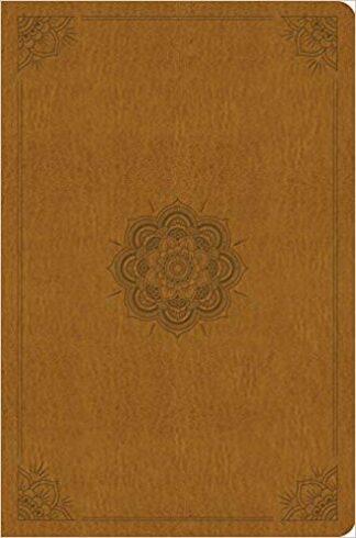 ESV Compact Outreach Bible, Premium Edition Imitation Leather – 29 Apr 2016