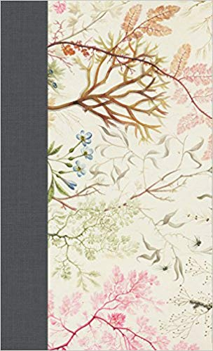 ESV Journaling Bible, Writer's Edition (Elegant Grace) Hardcover – February 29, 2016