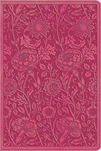 ESV Personal Reference Bible (TruTone, Berry, Floral Design) Imitation Leather – June 30, 2013