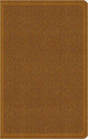 ESV Value Thinline Bible Imitation Leather – 29 Jul 2016