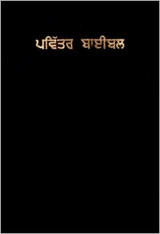 Holy Bible (Punjabi Edition) (Punjabi) Paperback – February, 2001